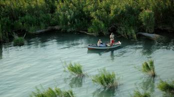 Négy partszakasz kivételével feloldották a csónakról történő horgászat áprilisi tilalmát a Balatonon