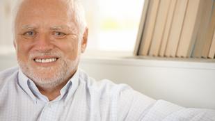 Hide the Pain Harold mint vakcinaregisztrációs arc?