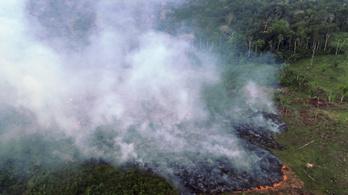 Egymilliárd dollár segélyt kér Brazília az Amazonas megmentésére
