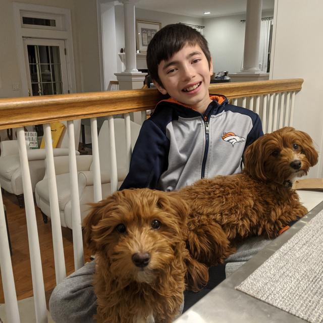 Több mint 1600 idős embernek segített vakcinához jutni a 12 éves New York-i fiú: saját honlapot fejlesztett ki