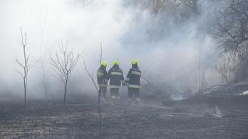 Így lángolt a nádas Budapest határában