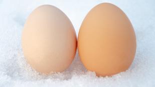 Le lehet fagyasztani a nyers tojást? És a főttet?