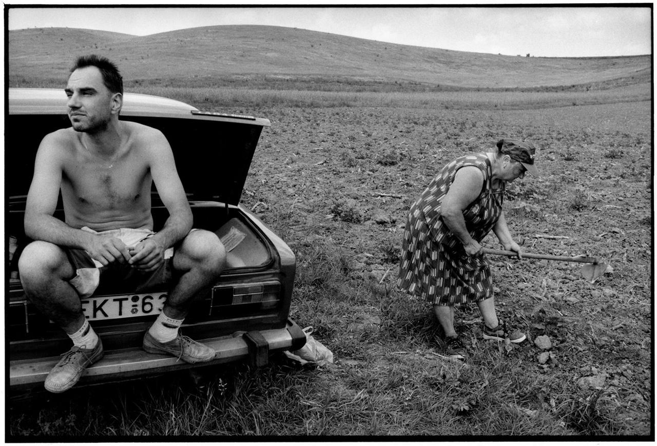 © Benkő Imre Családi gazdaság. Szécsényfelfalu, 2003