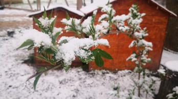 Csütörtökig tart a tavaszi tél, vasárnap már csodálatos idő lesz