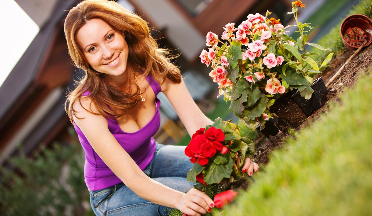 virág ültetése nyitó