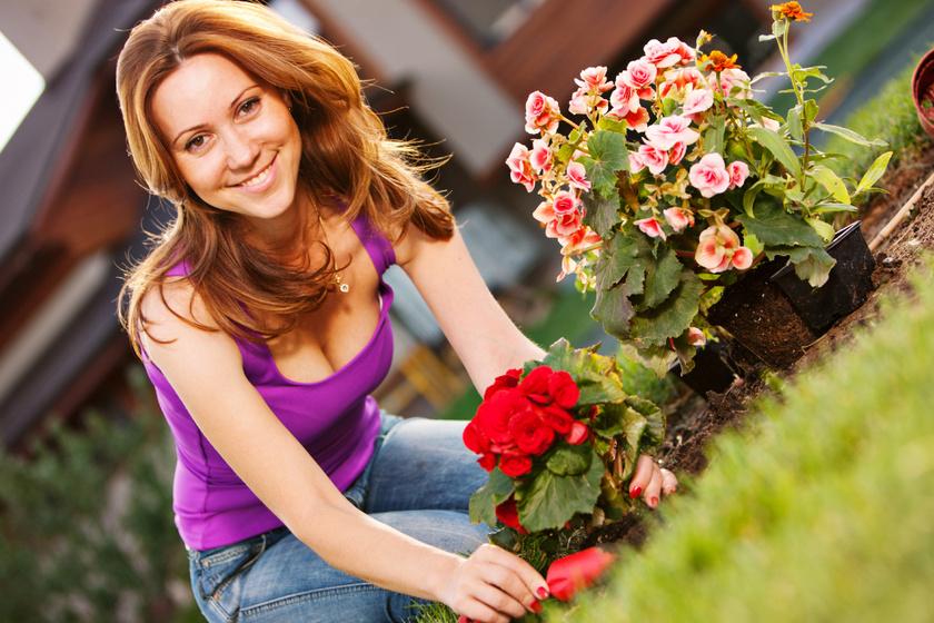 8 pompás dísznövény, amit tavasszal érdemes ültetni: hamar a kert gyöngyszemei lesznek