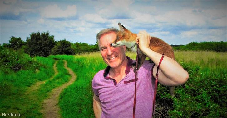 tk3s swns fox friend 007