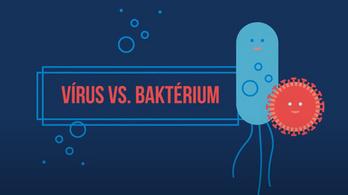 Most akkor vírus, vagy baktérium? - itt a válasz a kérdésre, amit mindig is keresett