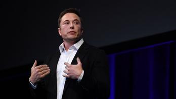 Pongot játszik Elon Musk agy-számítógép kapcsolatán a majom