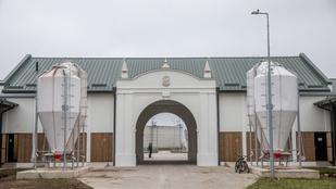 Sportcsarnok épülhet a mezőhegyesi ménesbirtokon