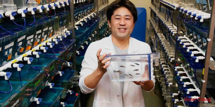 Dr. Kazu Kikuchi és a csodálatos halak