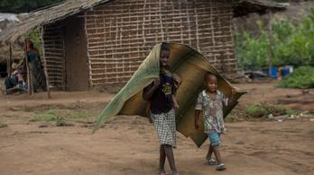 Mozambikban csaknem egymillió embert fenyeget éhínség a terrorizmus miatt