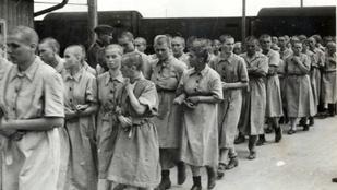 Járványok a lágerben: nem volt menekvés a tetvektől és a betegségektől, amiket terjesztettek