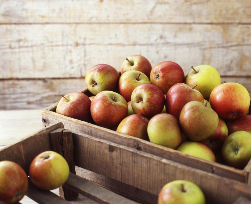 alma kosár láda