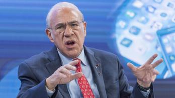 A gazdaság új alapokra helyezett újjáépítését javasolja az OECD