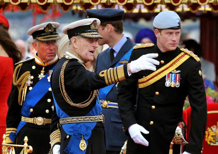 Fülöp herceg és Harry herceg beszélget egyenruhában egy 2012. júniusi rendezvényen. A háttérben Károly herceg és Vilmos herceg is látható
