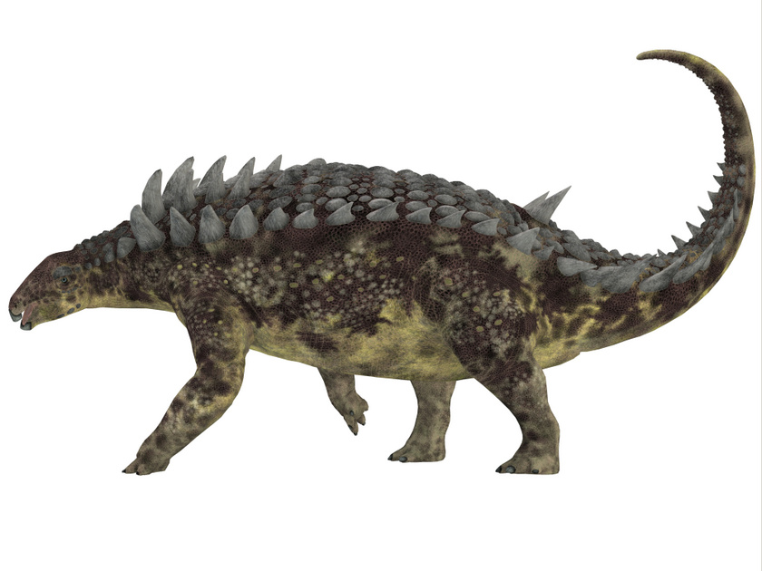 Így nézhetett ki a Hungarosaurus tormai.
