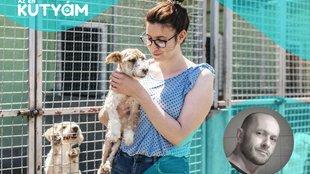 Ingyen kutyát a menhelyről: Márton Attila különvélemény