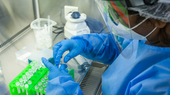 Koronavírus: mit tudunk a mutációkról?