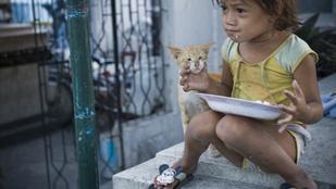 Gyorséttermi szemét átmosva, sütve vagy szószban: ez a pagpag, a Fülöp-szigetek nyomorétele