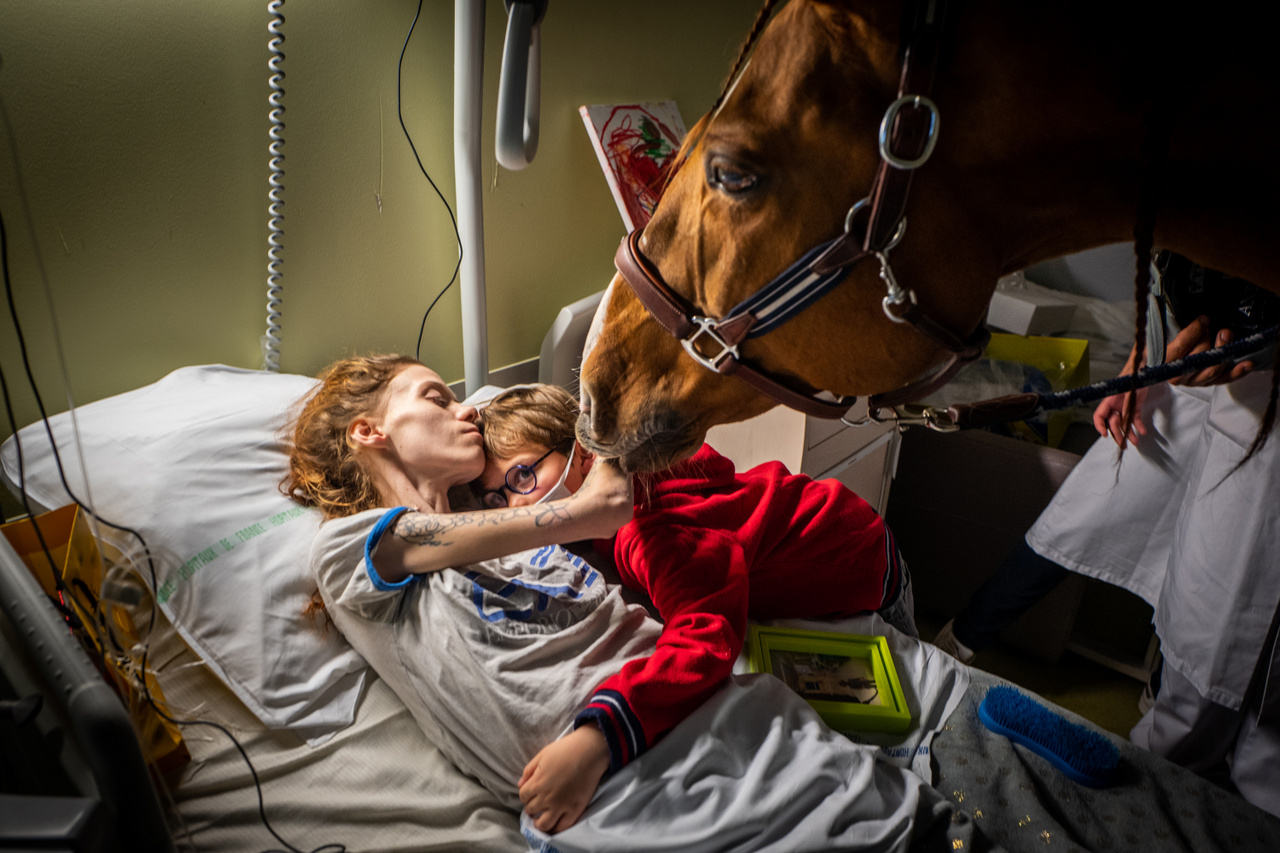 Jeremy Lempin Doktor Peyo és Mister Hassen című fotója a Kortárs kérdések (egyedi) kategória 2. helyezését érte el. A képen az áttétes rákban szenvdeő Marion (24) és fia Ethen (7) látható Peyoval az állatterápiás lóval, Franciaországban, a Calais-i központi kórházban. Az állatok gyógyászati alkalmazásának lényege, hogy csökkentik a szorongás és stressz tüneteit, csökkentik a vérnyomást és lassítják a pulzust. A lovak különösen alkalmasnak bizonyultak arra, hogy kapcsolatot alakítsanak ki végstádiumú betegekkel.