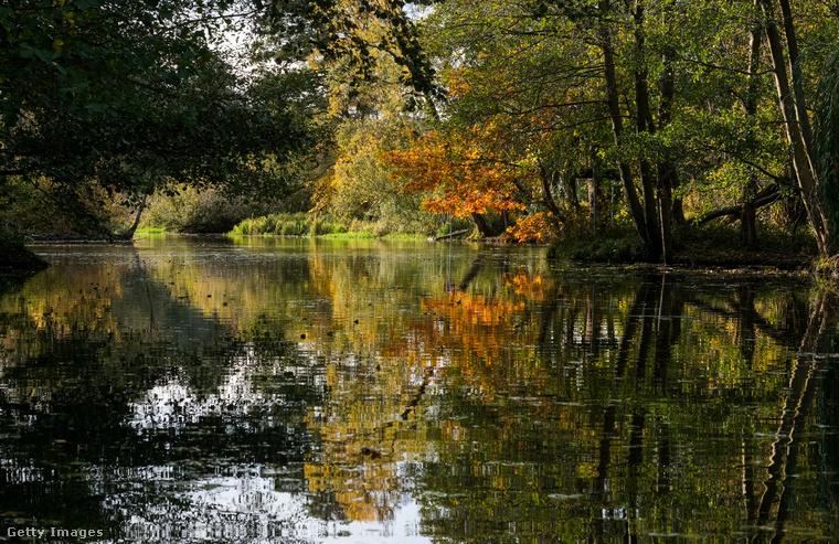 Na de kezdjük az elején: a Spreewald egy bioszféra-rezervátum, a németországi Brandenburg tartományban található
