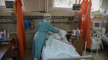 Javuló járványadatok és iskolanyitás Szerbiában