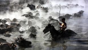 Indokolatlanul attraktív fotók készültek egy török bivalypásztorról