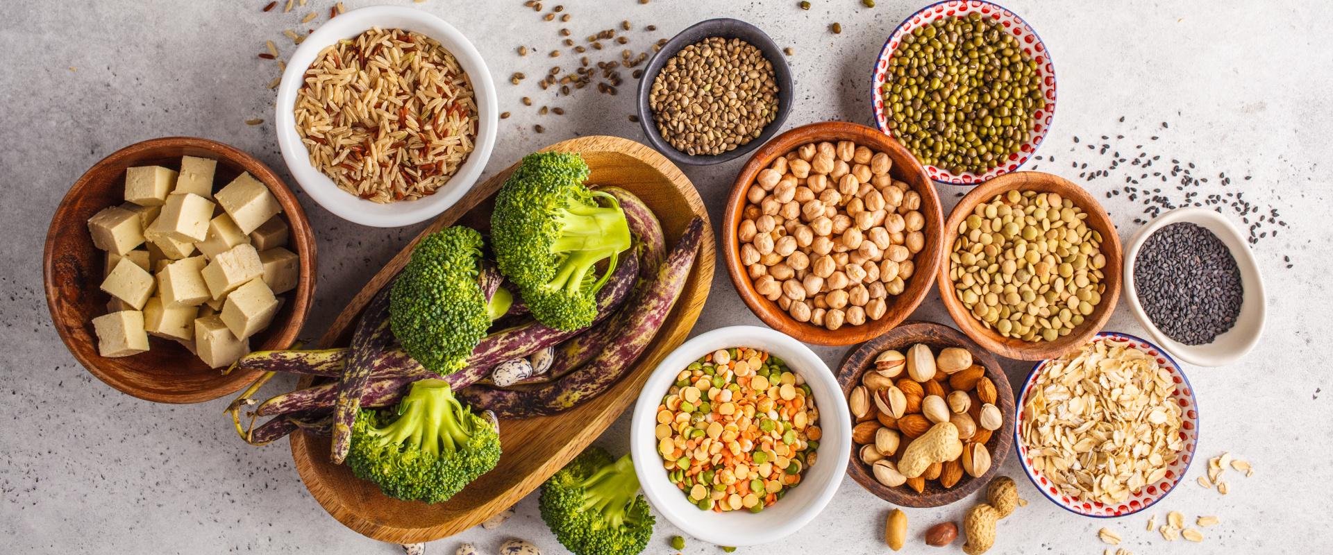 növényi fehérjék cover
