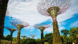 Mesterséges fákkal a tiszta levegőért?