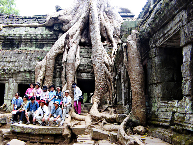 Ankor, Ta Prohm, gyökerek és templomok