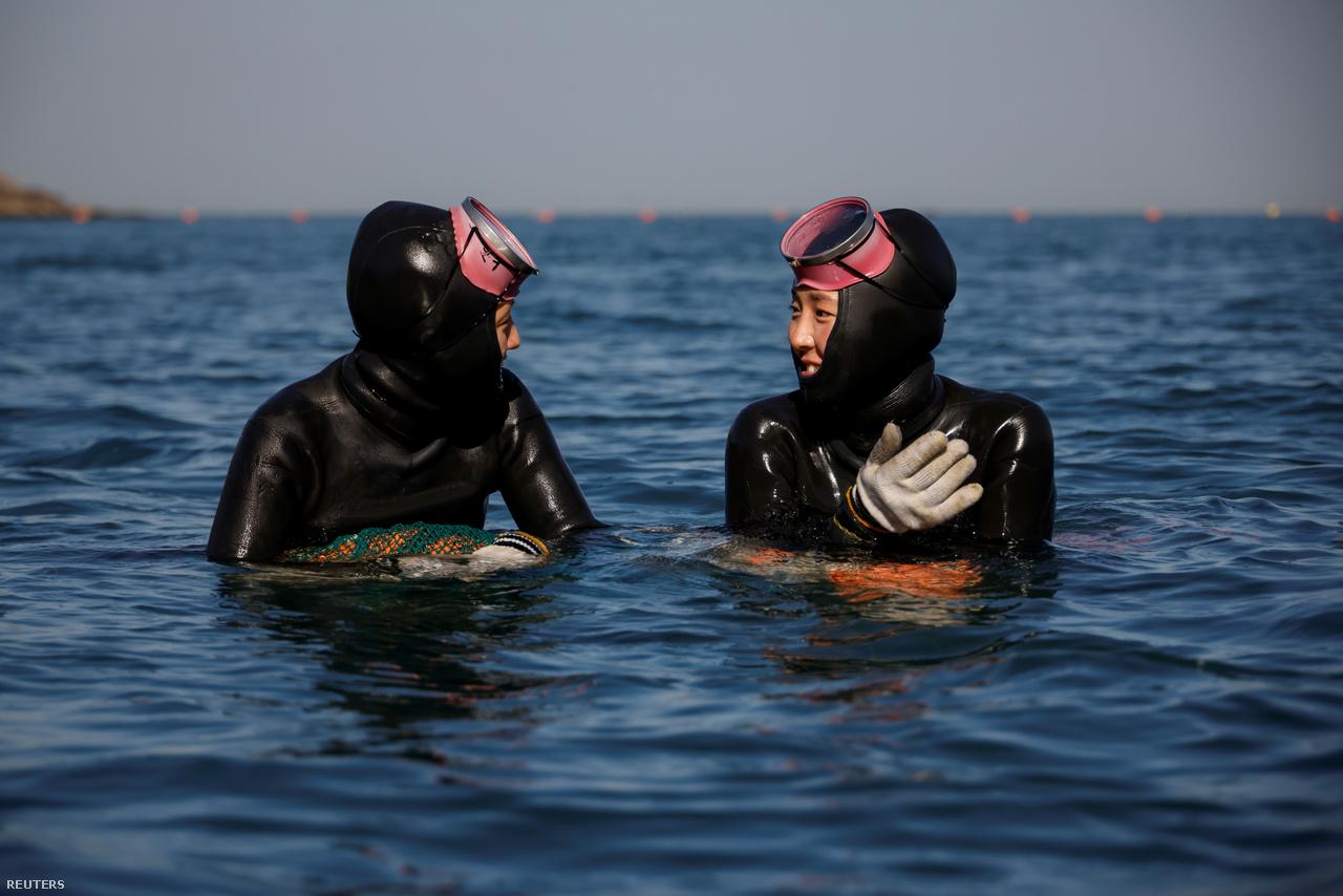 A 28 éves Dzsin és a 35 éves Vu beszélgetnek a tengerben Kodzse szigeténél 2021. március 30-án. Ők a legfiatalabbak a henyók között, a többség már elmúlt 70 éves. You Tube-csatornájukon népszerűsítik ezt az ősi mesterséget.