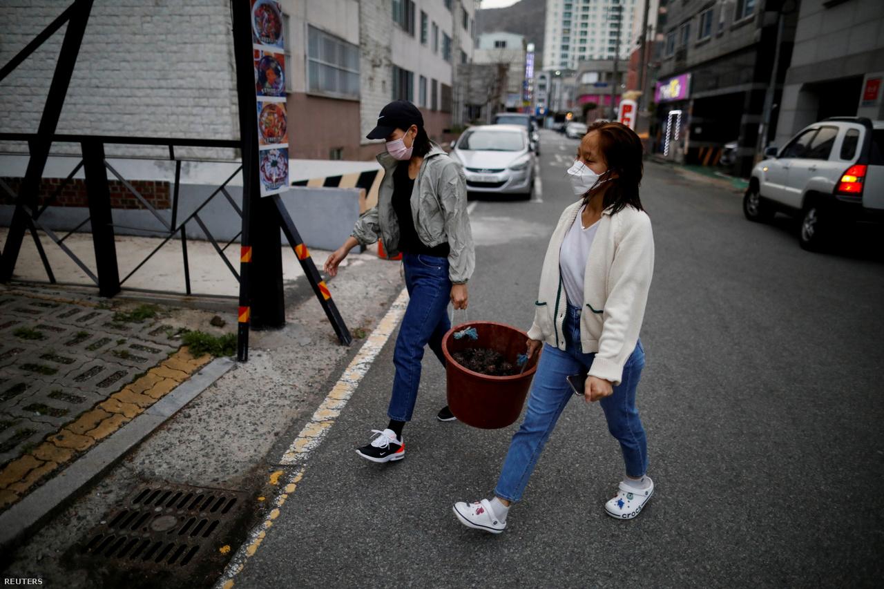 Vu és Dzsin kagylókat visznek egy kodzsei étterembe.