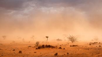 Éhínség fenyeget Szomáliában