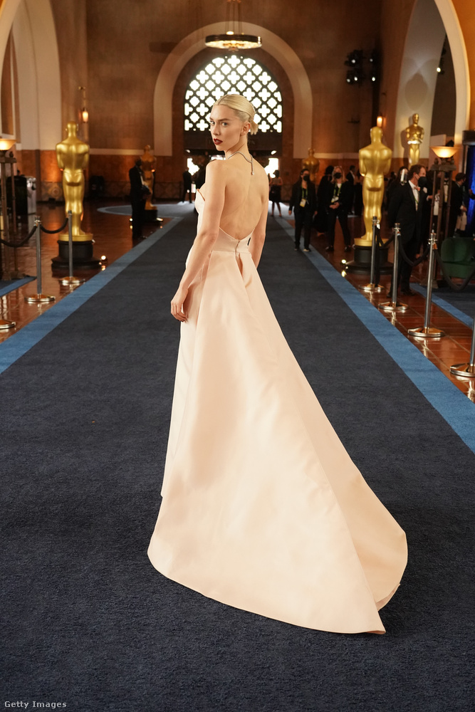 A ruhája Alexander McQueen-tervezés.