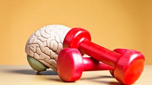 Jobb memória, szellemi frissesség: így fejleszti az agyadat a rendszeres edzés