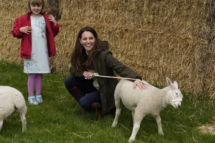 Katalin hercegné a Manor Farmon bárányokat is simogathatott.