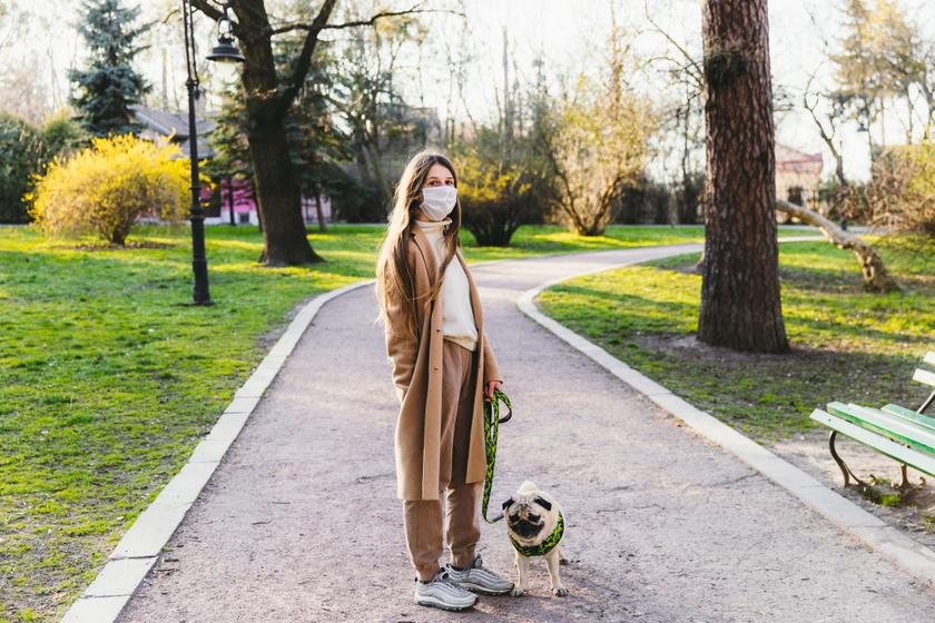 karantén kutya gazdi sétáltató séta