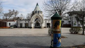 Szombaton kinyithat a budapesti állatkert is!