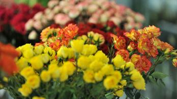 Idén is a vágott virágok a legnépszerűbbek