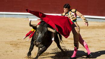 Jótékonysági bikaviadalt tartottak Madridban