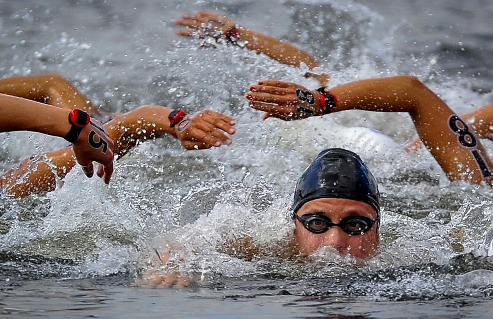 Sport (egyedi) első hely  - RisztovA magyar Risztov Éva úszik a hosszútávúszás 10 kilométeres távján, aki megnyerte ezt a számot a 2012-es londoni nyári olimpián a Hyde Parkban 2012. augusztus 9-én.