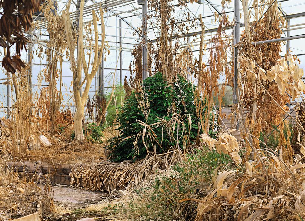 II-es Bioszféra, 3-as számú üvegház, Arizonai Egyetem, O 86 racle, U.S.A., 2009.                         Az Arizonai Egyetemen lévő kutatóközpont, ahol egy 12 ezer négyzetméteres területet fedtek le üvegtetővel. A rendszer teljesen zárt, a benti levegő összetételét az élőlények oxigén és szén-dioxid termelése határozza meg. Több kutató élt ott évekig, saját maguk termelve a szükséges élelmiszert.