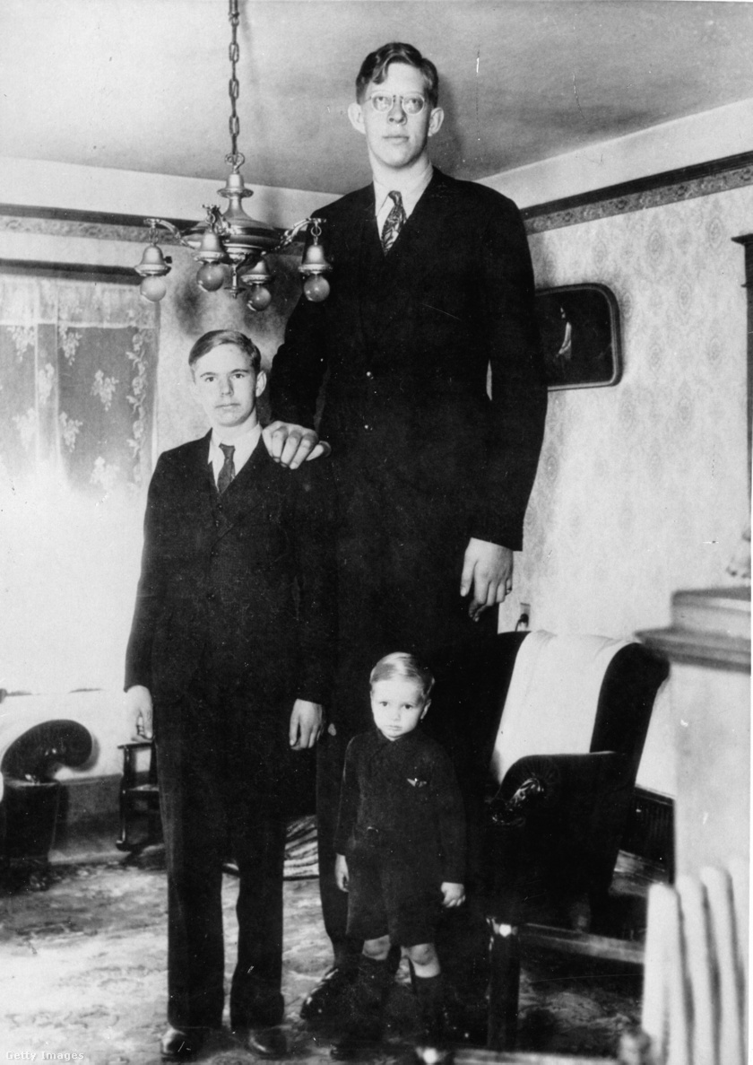 Testvérei teljesen átlagos magasságúak voltak.