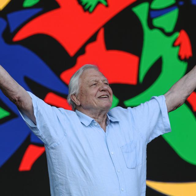 95 éves lesz David Attenborough: a természettudós, ahogyan még nem láthattuk