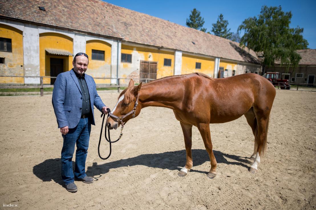 Brenyó József egy kisbéri lóval, Indigóval