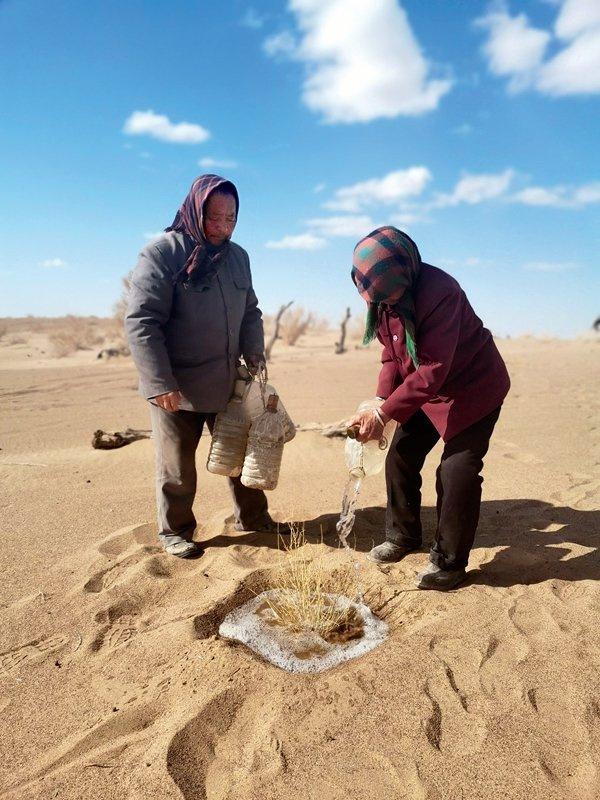magas sivatagi fogyás)