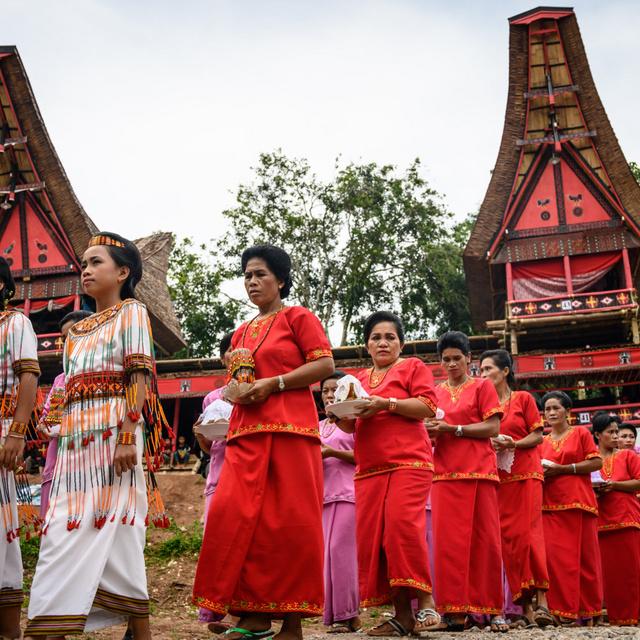 Ilyen az élet az egykor elszigetelt indonéz nép elvarázsolt földjén: a toradzsák temetési szertartásaikról is híresek