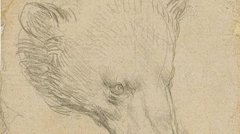 Ötmilliárd forintot ér a Da Vinci-rajz, amelyet nyáron bocsátanak árverésre