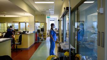 Csak a legsürgősebb eseteket fogadják a kórházak még hetekig